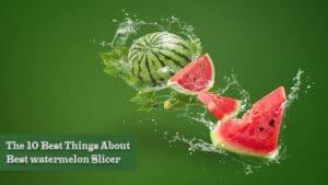 features best watermelon slicer